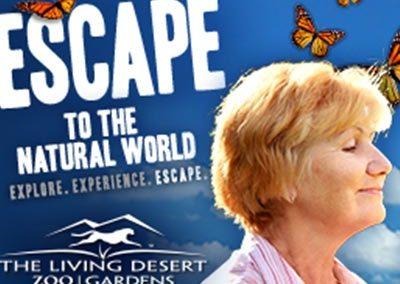 The Living Desert Web Banner Ads