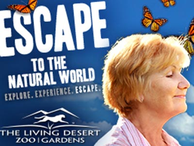 The Living Desert Web Banner Ads