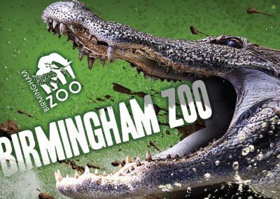Birmingham Zoo Billboards – High Energy Series