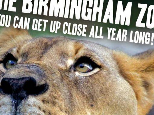 Birmingham Zoo Year Membership Ad