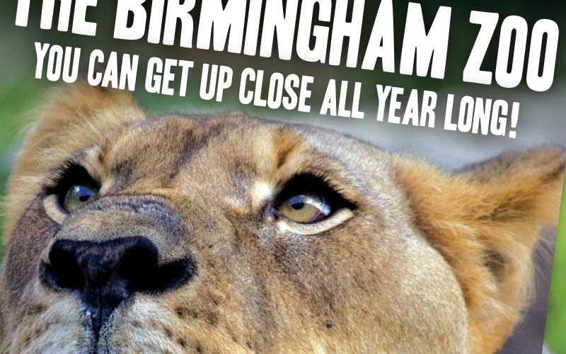 Birmingham Zoo Year Membership Ad
