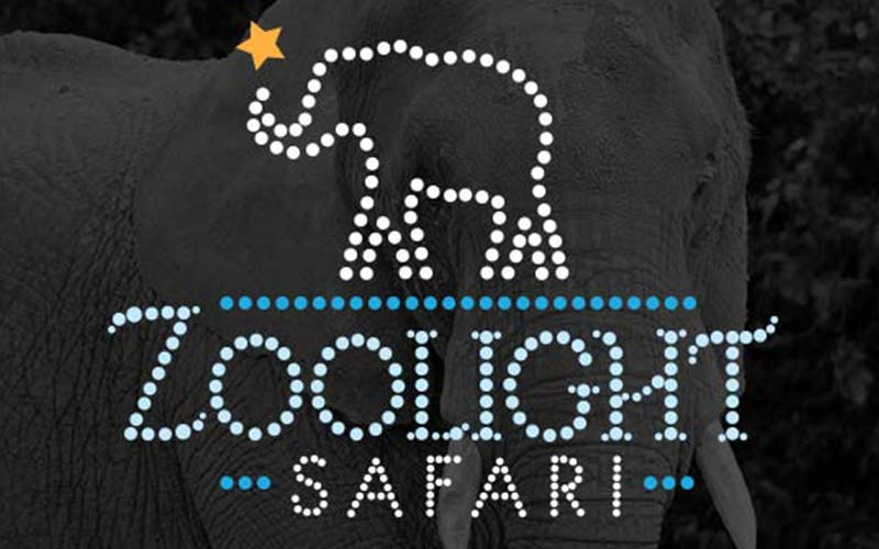 Birmingham Zoo – Zoo Lights Logo