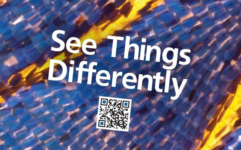 Ocean Optics Print Advertisements